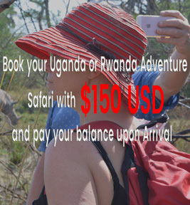 book your safari
